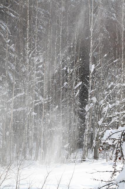 winter-58581_640